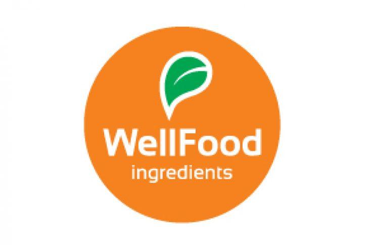logo-wellfood
